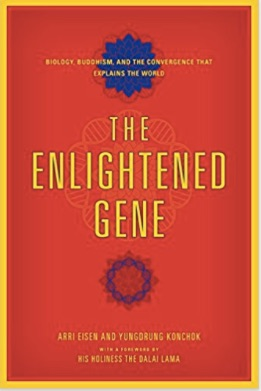 enlightened gene cover